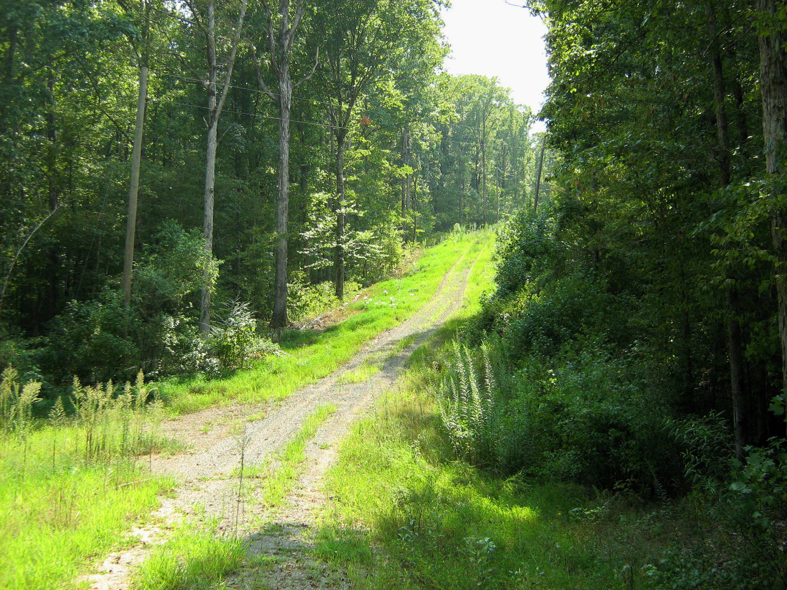 old county road goes through the property