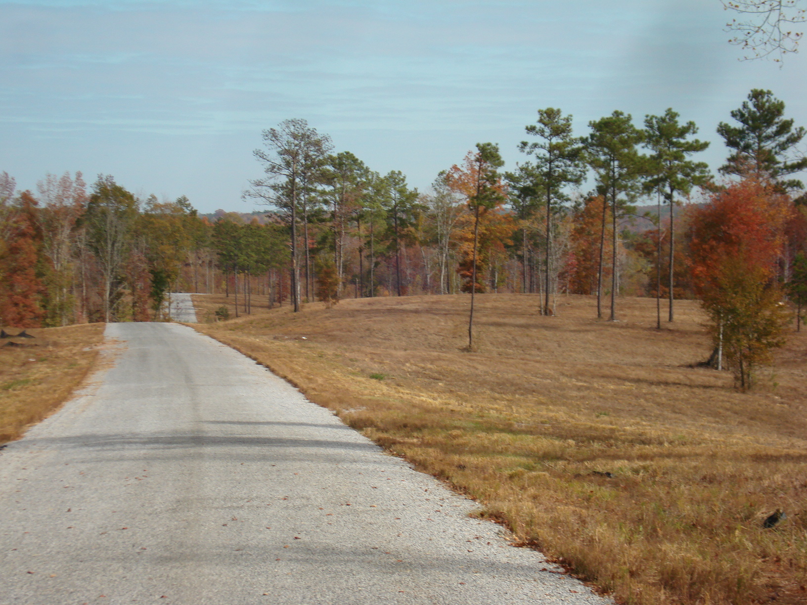 looking east down the private gravel road. Tract 3 on the right