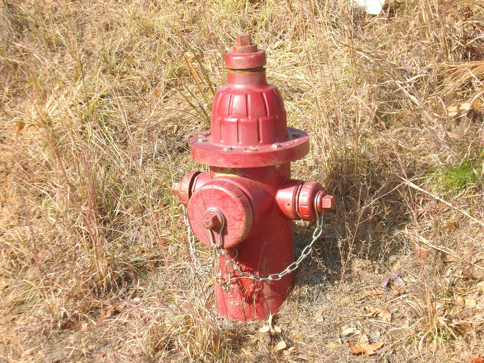one of three fire hydrants. All properties have water service
