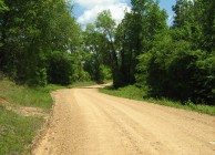 Rural home sites & timber investment near Tuscaloosa
