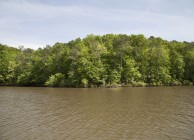 REDUCED PRICE!  Beautiful 3.7 acre lot on Yates Lake (Tallapoosa River)