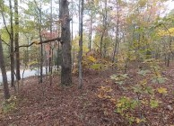 Great rural home site & cheap hunting land