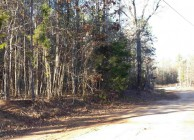 Beautiful residential lot near Auburn