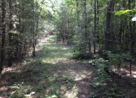 Looking for Affordable Hunting Land?