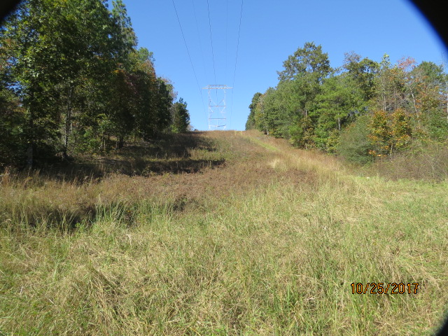 This powerline crosses the property for about 375 yards