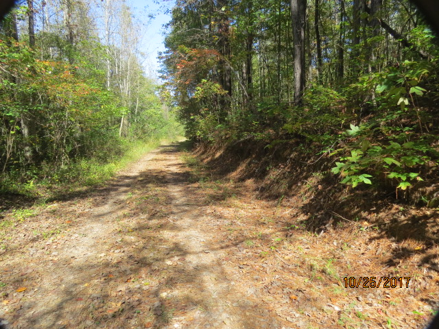 The property has several excellent quality woods roads