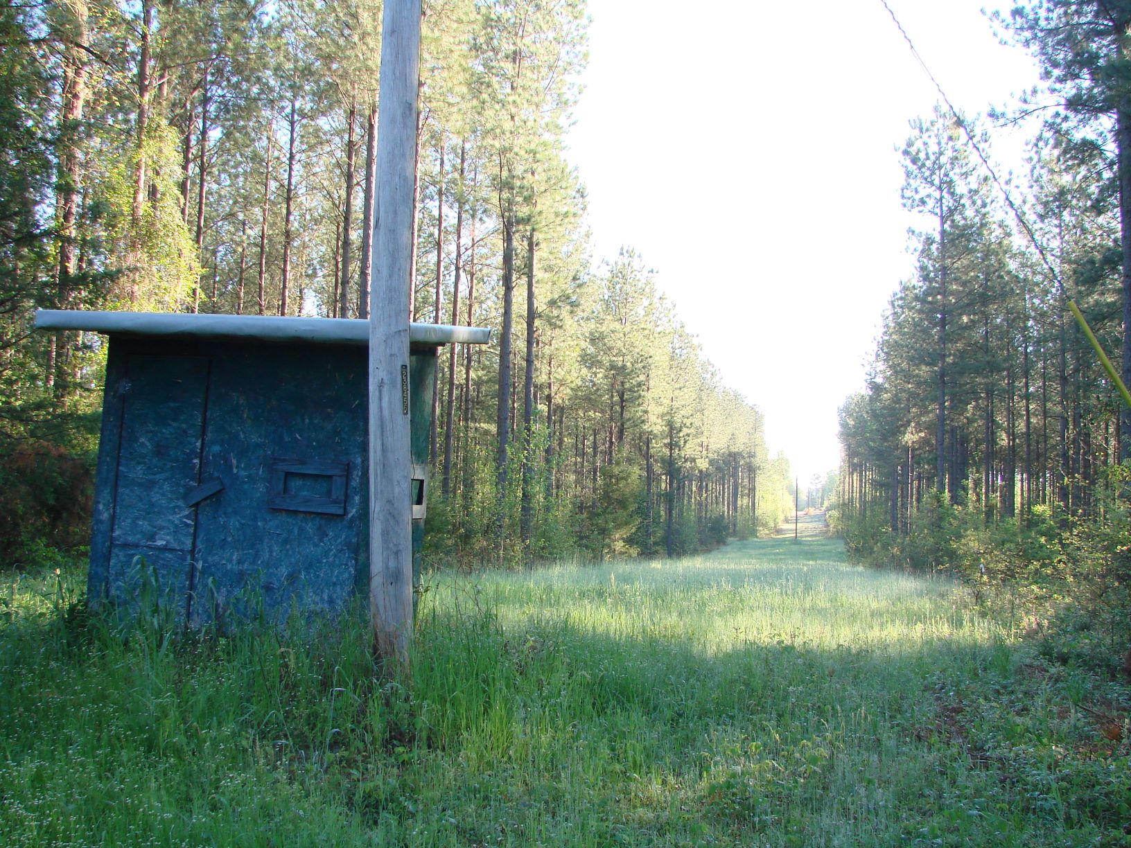 A shooting house on a 500 -foot long food plot