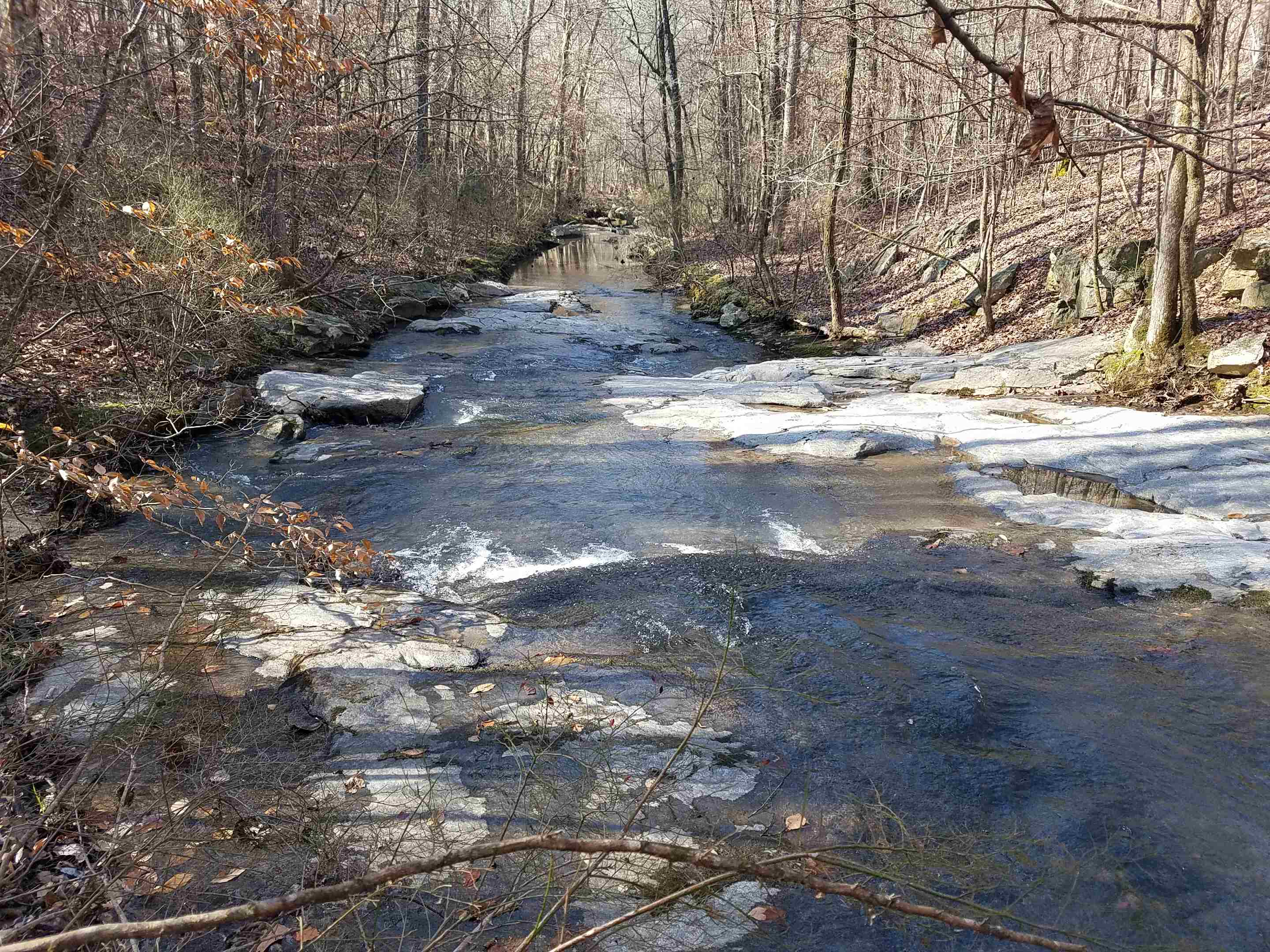 This beautiful creek flows all year and goes through the property for 1/2 mile