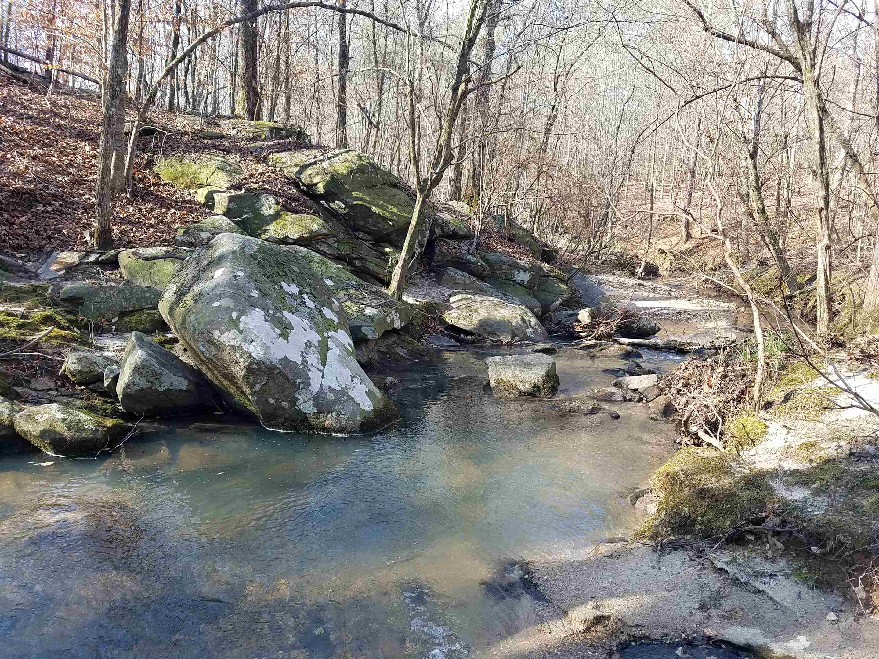 Another view of the creek looking south