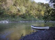 Cahaba River Beauty