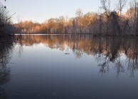 Duck Hunting Land On The Black Warrior River