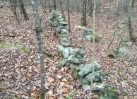 Beautiful Hunting & Timber Investment