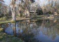 Old Town Creek Blackbelt Farm