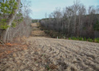 SYLACAUGA HUNTING, TIMBER, AND HOMESTEAD LAND