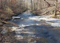 Beautiful Creek & Great Hunting