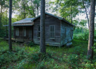 TREE FARM, LAKE, CABIN FOR SALE IN ARITON, AL